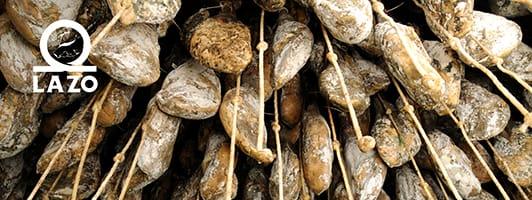 jabugo iberico bellota